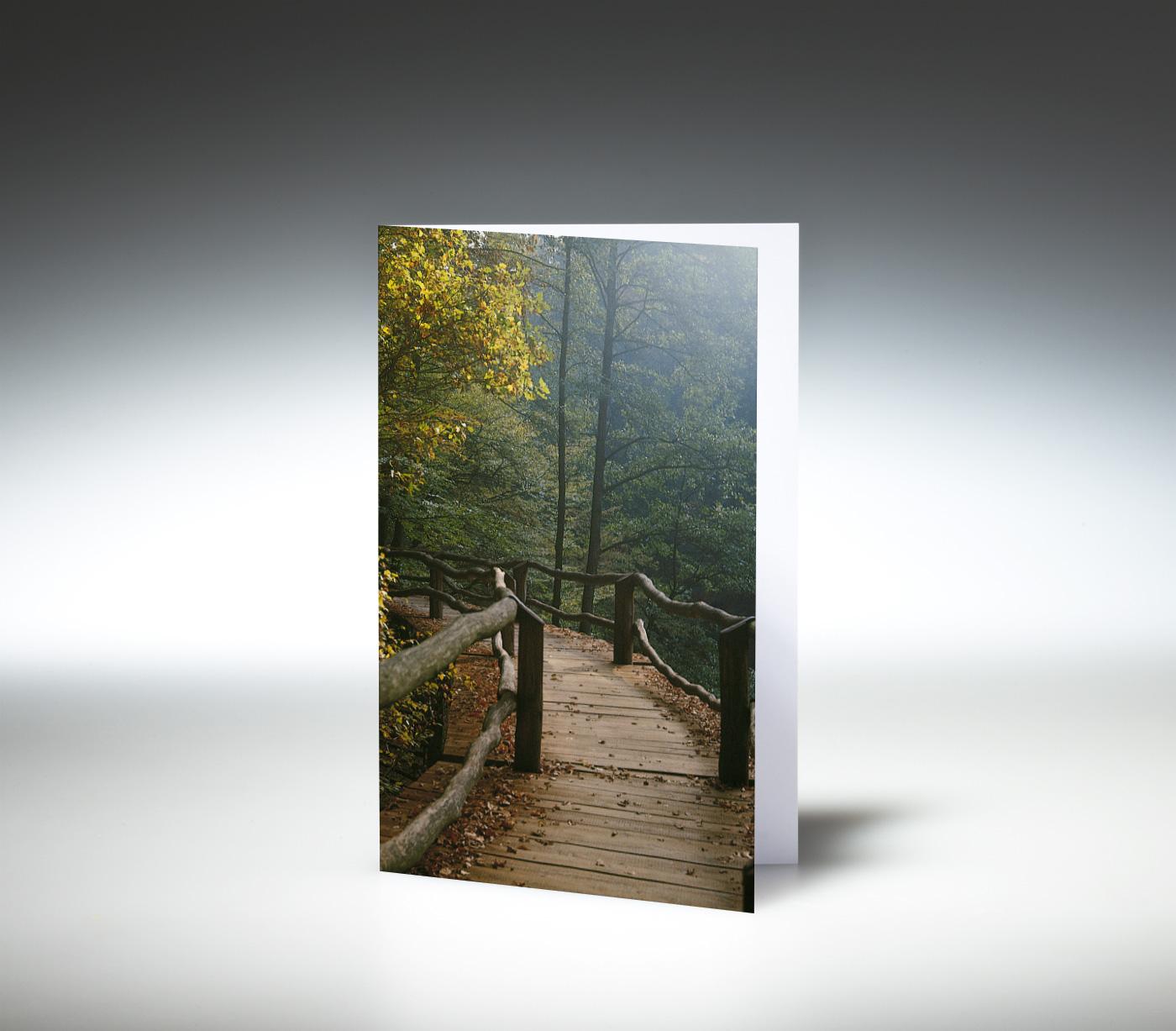 trauerbild waldweg mit br cke memento trauerbilder. Black Bedroom Furniture Sets. Home Design Ideas